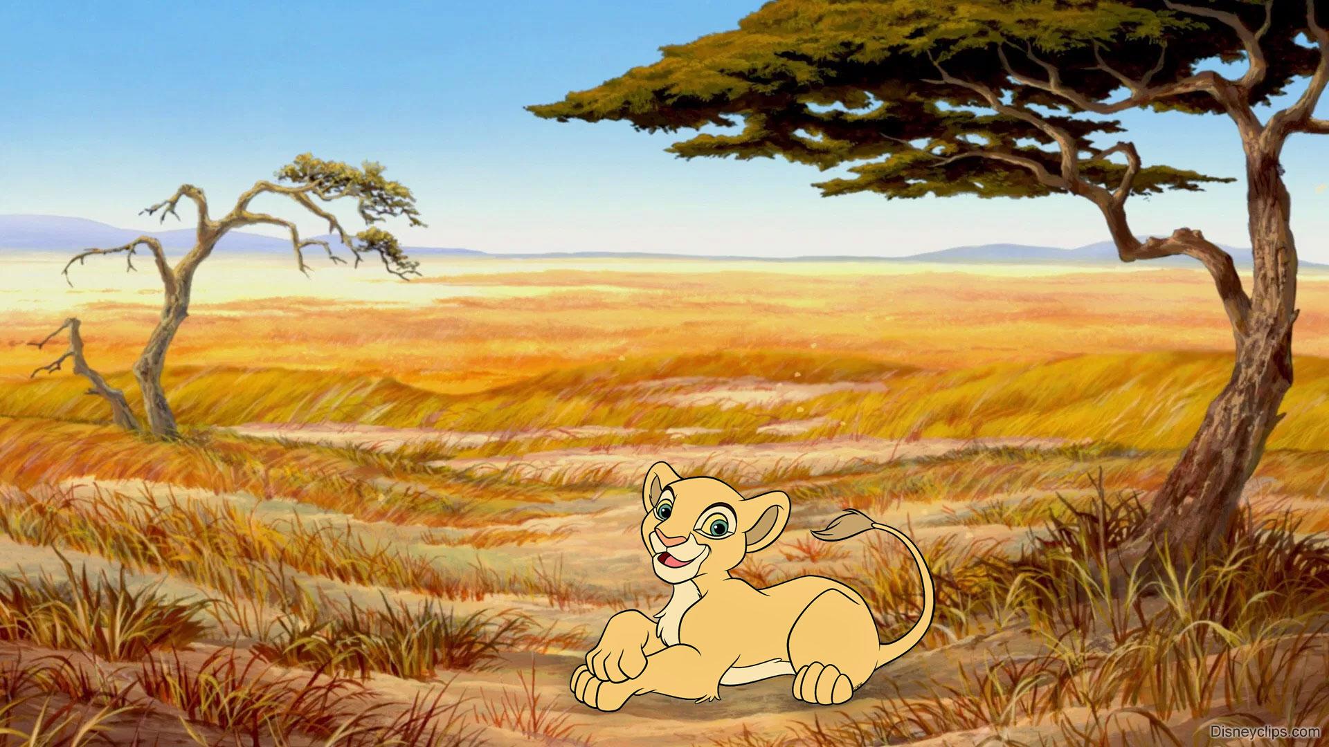 The Lion King Wallpaper Disneyclips Com